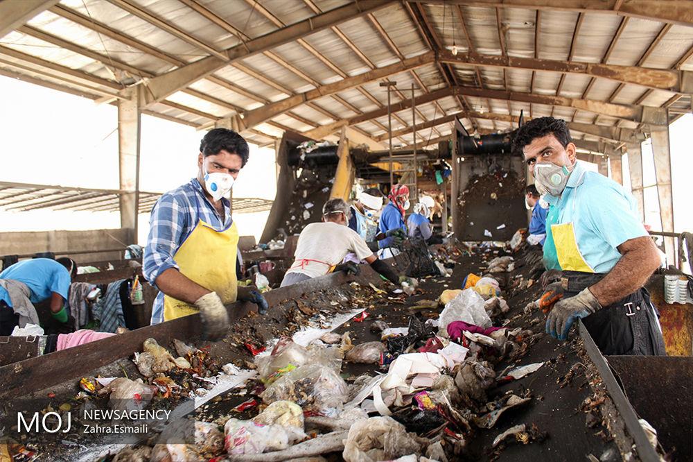 بازیافت زباله در بندرعباس