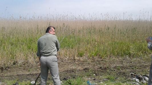 جلوگیری از تخریب اراضی تالاب انزلی