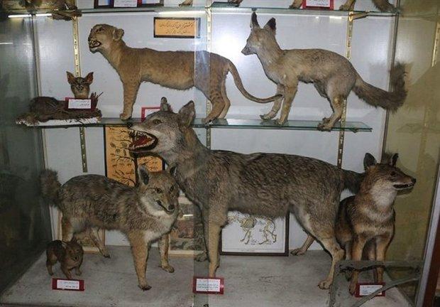 موزه تنوع زیستی اصفهان