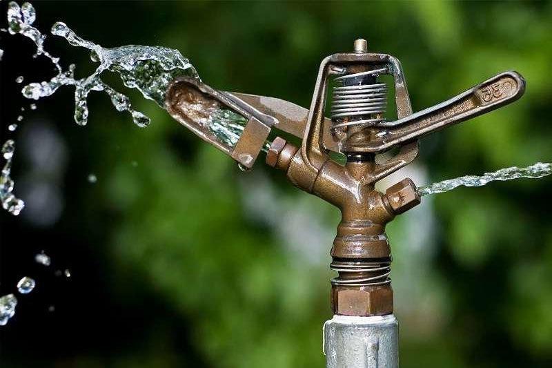 بهره وری آب در حوزه کشاورزی
