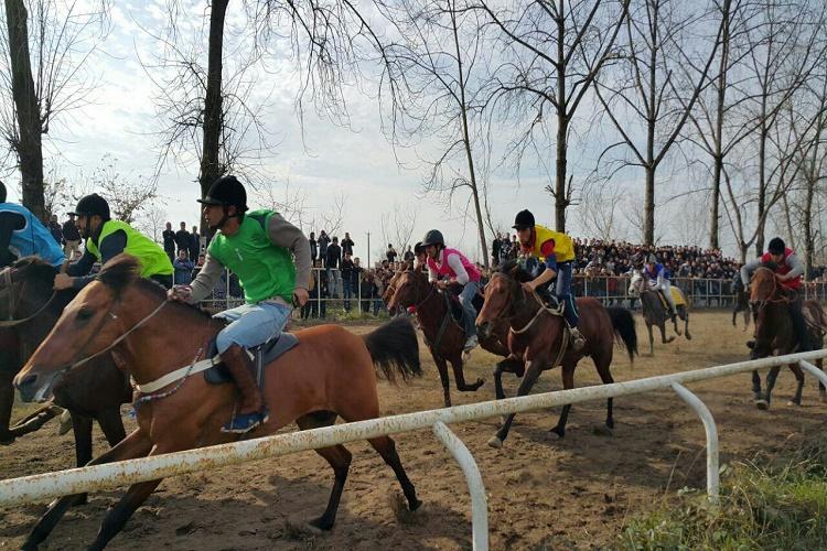 مسابقات اسب سواری رشت