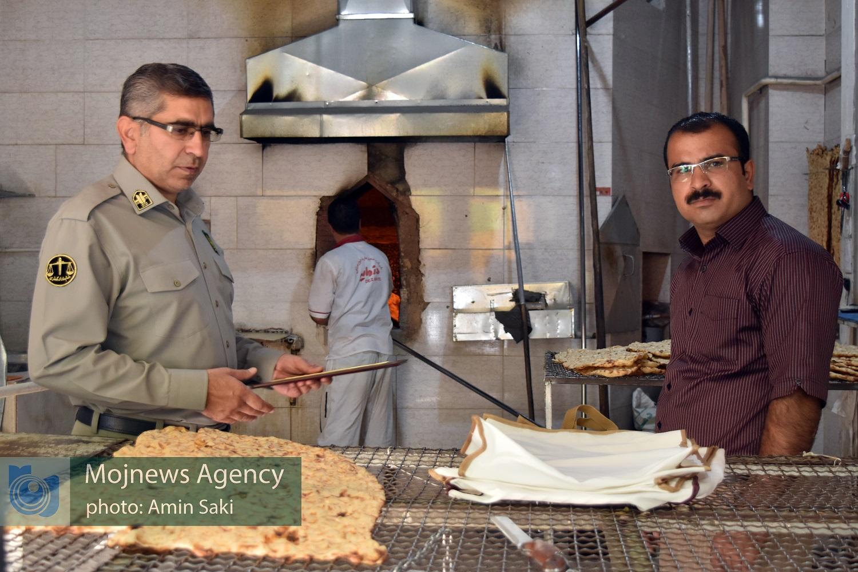 تقدیر مدیرکل محیط زیست لرستان از نانوایی