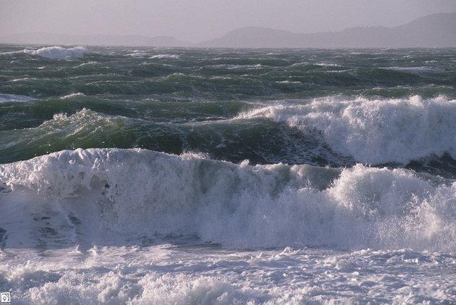 فعالیت در دریا