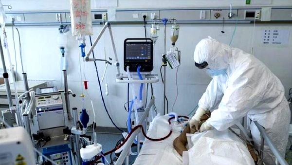 رییس بخش عفونی بیمارستان امام رضا(ع) مشهد