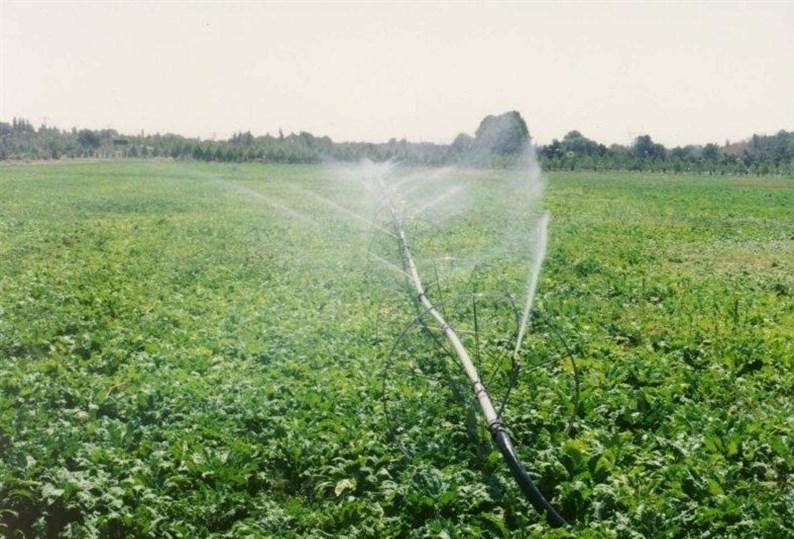 ایده کشاورزی