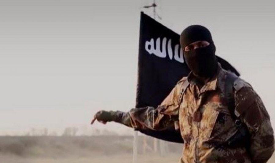 حامیان داعش