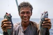 ناظر مقیم بر نحوه صید شناورهای فانوس ماهیان نظارت دارد