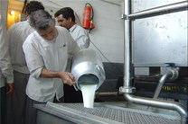 عرضه ۵۰ تن شیر خام