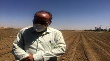 مقایسه فنی و اقتصادی آبیاری زیرسطحی با آبیاری بارانی در محصول یونجه با مطالعه موردی شهرستان همدان