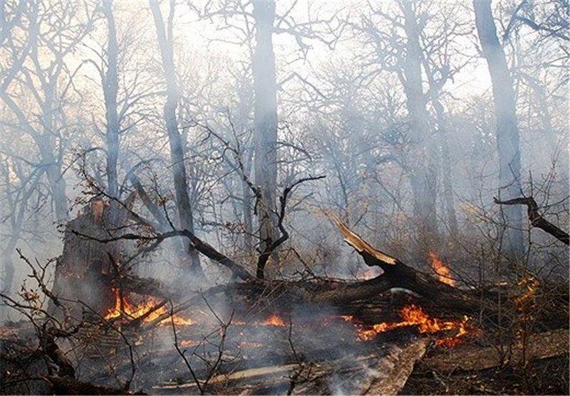 افزایش5 تا 10 درجه ای دمای هوای گیلان/ وزش باد گرم  و خطر آتش سوزی جنگل ها