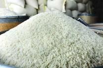 مناقصه واردات 30 هزار تن برنج هندی منتشر شد/ لایحه ممنوعیت واردات برنج روی هوا رفت