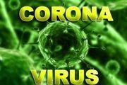 ۵۶ نفر بر اثر ابتلا به ویروس کرونا جان باختند