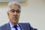 وزیر امور خارجه پاکستان به ملت و مردم ایران تسلیت گفت