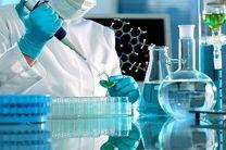 تجاریسازی نانوالیاف در حوزه پزشکی بررسی میشود