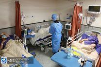 بستری شدن ۱۳ بیمار جدید مبتلا به ویروس کرونا در کاشان