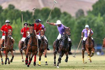 آمادگی هیات چوگان گیلان برای احداث باشگاه های تخصصی در سراسر استان/ توجه ویژه به اسب کاسپین در دستور کار هیات