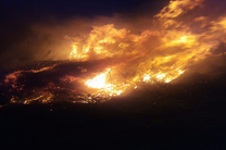 آتش سوزی گسترده اراضی پارک ملی بوجاق کیاشهر مهار شد