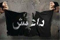 داعشیها با ۱۶۰ خودرو از موصل به سوریه فرار کردند