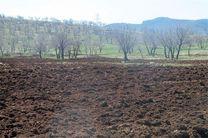 تخریب انسانی منابع طبیعی در استان گلستان نگرانکننده است