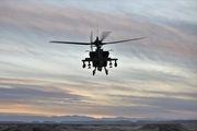 2 کشته در پی سقوط بالگرد در آمریکا