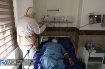 91 بیمار مشکوک به کرونا در یزد تاکنون بهبود یافته اند