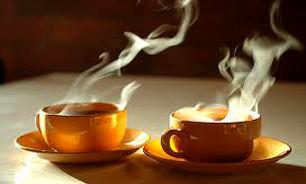 تقویت سیستم ایمنی بدن با مصرف چای اصل / بهترین دم نوش را بشناسید
