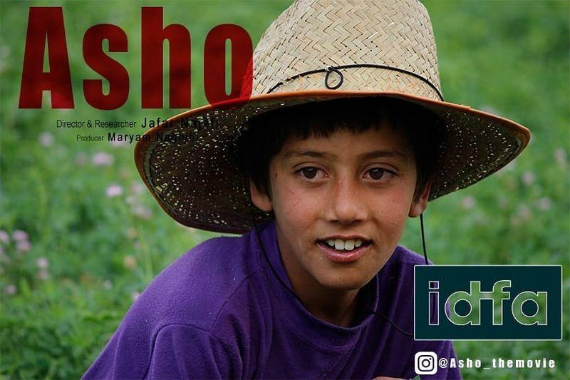 سومین حضور جهانی آشو در یک ماه اخیر/بخش رقابتی ایدفا میزبان آشو