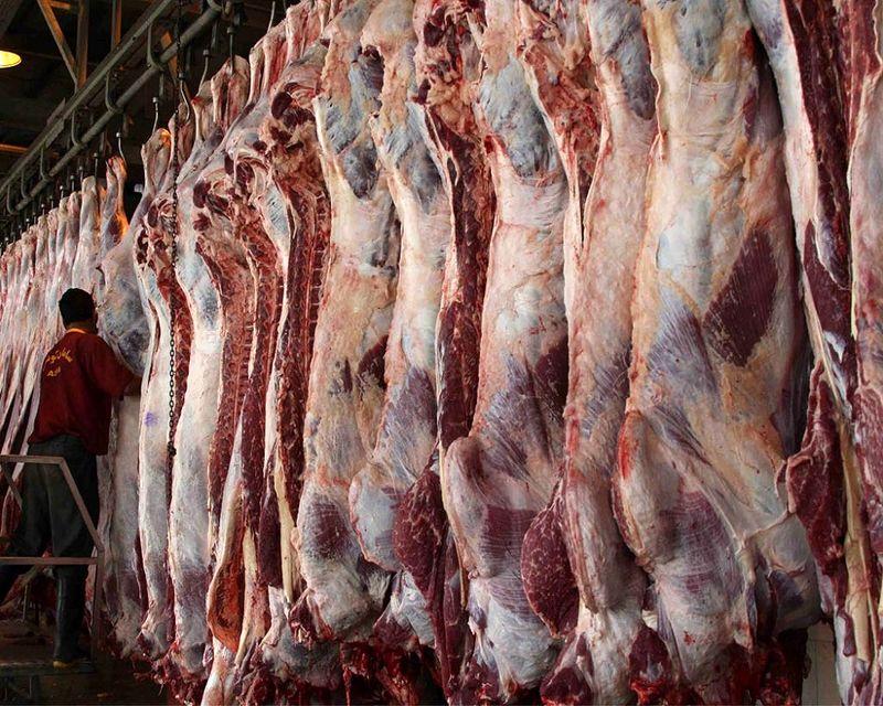 توقف صادرات دام راهکار دولت برای توقف افزایش قیمت گوشت قرمز