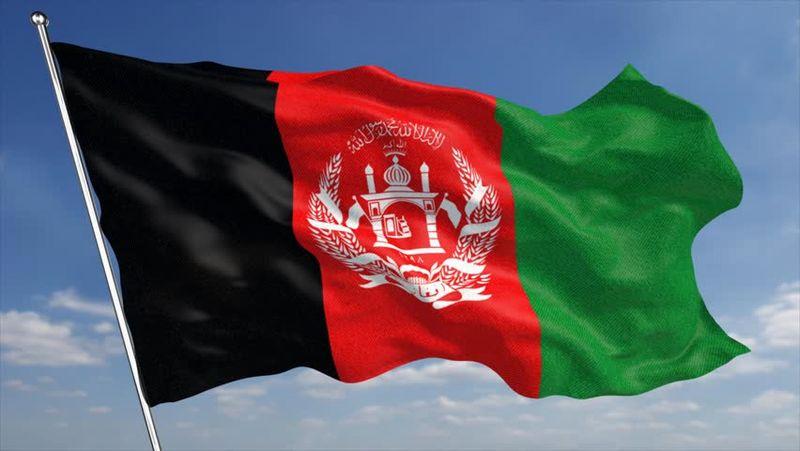 طالبان 6 عضو یک خانواده را به قتل رسانده است