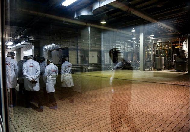 هر سهم شرکت شیر پاستوریزه پگاه ۳۳۵۵ ریال قیمت گذاری شد