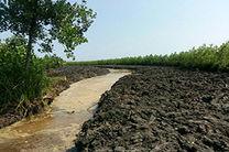 رفع تصرف 30هزار مترمربع از مناطق حفاظت شده صومعه سرا