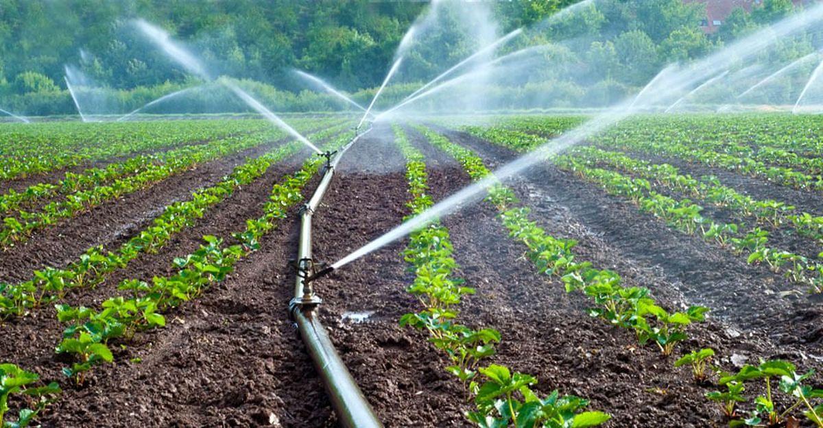 اردبیل پایلوت اجرای آبیاری هوشمند زیرزمینی و تولید علوفه در کشور