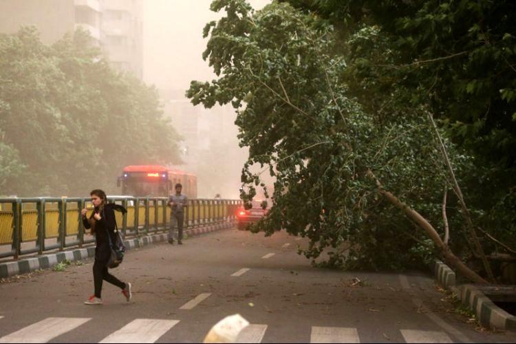 پیش بینی وزش شدید باد در کشور از فردا