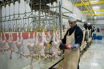 قیمت مرغ در روزهای آینده کاهش خواهد یافت