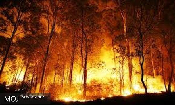 ۹۰ هکتار از مراتع و جنگل های دزفول در آتش سوخت