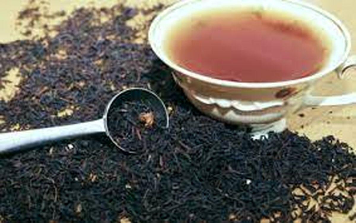 افزایش ۲۵ درصدی تولید چای در کشور