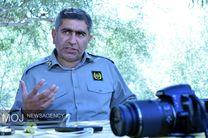 شکارچیان پرنده در منطقه شکار و صید ممنوع تالاب خروسان ازنا دستگیر شدند