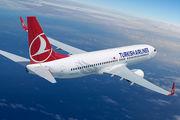 ترکیش ایرلاینز آمادگی خود برای کمک به صنعت توریسم فلسطین را اعلام کرد