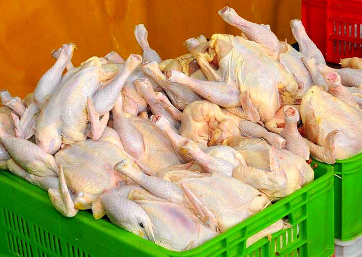 ۷ هزار و ۵۷ تن گوشت مرغ گرم به بازار عرضه شد