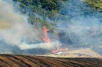 ۱۶۰۰ متر از جنگل های مینودشت در آتش سوخت