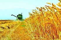 وظایف شورای قیمت گذاری محصولات اساسی کشاورزی اصلاح شد