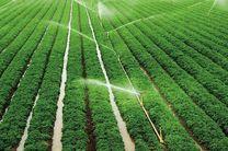 تولید کیفی تر و حفاظت بهتر دو رسالت بزرگ دربخش کشاورزی
