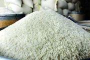 خرید توافقی برنج از شالیکاران در گیلان