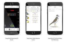 شناسایی پرندگان با صدای آنها به کمک یک اپلیکیشن