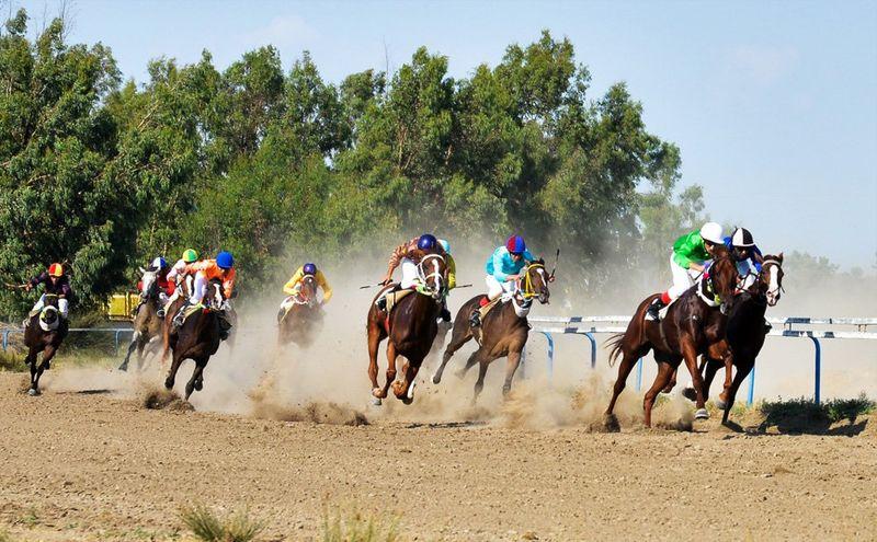 مسابقات کورس امتیازی اسب های محلی در رشت برگزار می شود