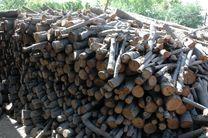 کشف و توقیف 4 تن چوب بلوط قاچاق در نجف آباد / دستگیری یک نفر
