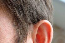 کشف ساز و کار موجود در پس ناشنوایی