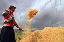 ۲۲۲هزار تن محصول کشاورزی در بورس کالا دادوستد شد