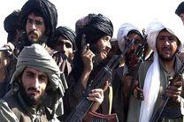 ارتش افغانستان فرمانده طالبان را تیرباران کرد