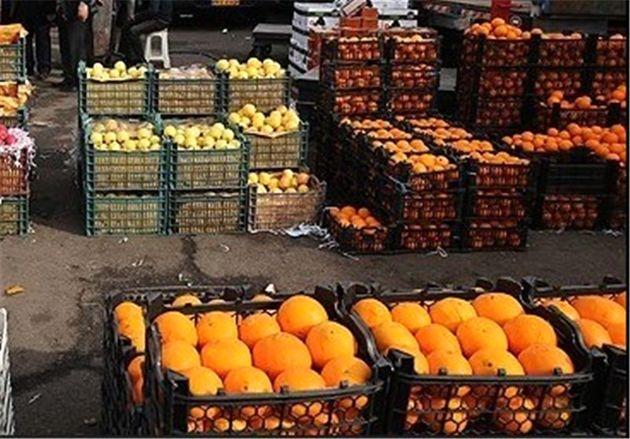 آغاز توزیع میوه شب عید از 25 اسفند با نرخ دولتی در اصفهان